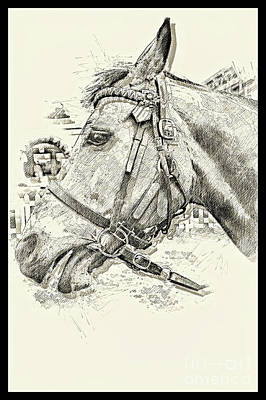 Photograph - Equine Sketch Newmarket I by Jack Torcello
