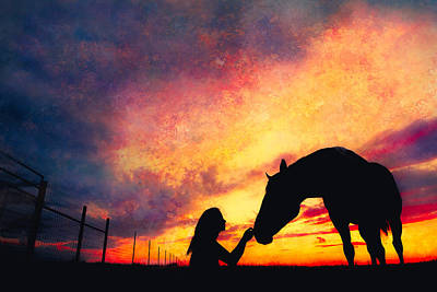 Texture Photograph - Equine Sunset by Debi Bishop
