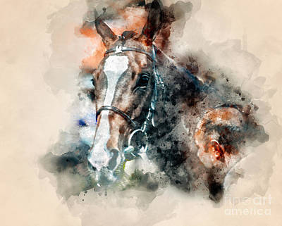 Photograph - Equine Watercolour I by Jack Torcello