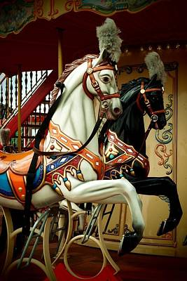 Photograph - Equines Of The Carousel by Dora Hathazi Mendes