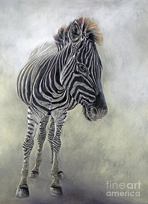 Equus Burchelli 1 Art Print