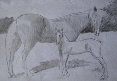 Drawing - Equus Caballus by SAIGON De Manila