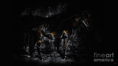 Wall Art - Photograph - Equus Lucis - Black And Gold by Kent Miklenda