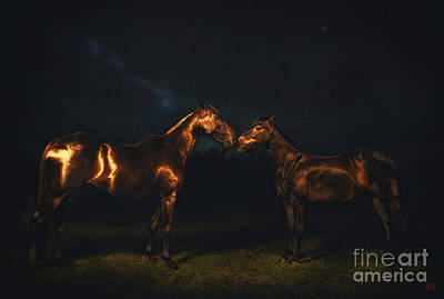 Wall Art - Photograph - Equus Lucis - Golden Night Horses by Kent Miklenda
