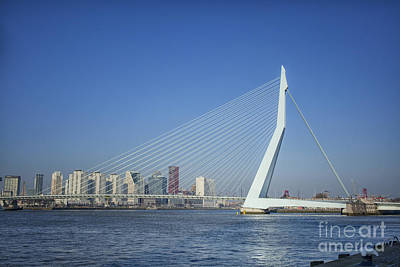 Photograph - Erasmus Bridge In Rotterdam The Netherlands, Europe by Patricia Hofmeester
