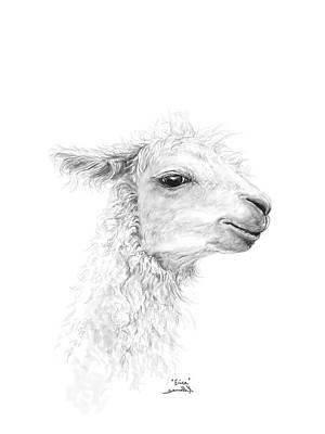 Drawing - Erica by K Llamas