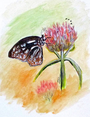 Painting - Erika's Butterfly Two by Clyde J Kell