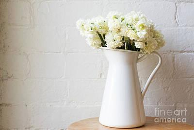Photograph - Erlicheer Daffodils by Natalie Board