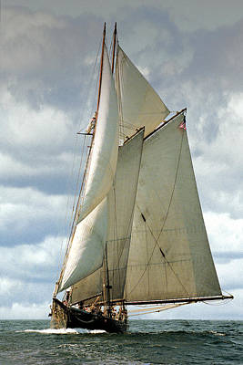 Windjammer Photograph - Ernestina by Fred LeBlanc