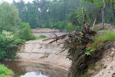 Photograph - Eroding River In The Netherlands by Hans Engbers