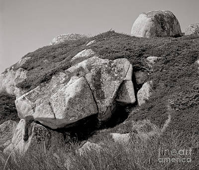 Featured Tapestry Designs - Erratic #8 by Lionel F Stevenson
