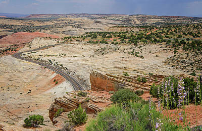 Photograph - Escalante River Basin by Susan McMenamin