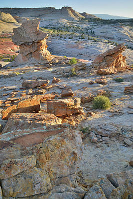 Photograph - Escalante Rock Croppings by Ray Mathis