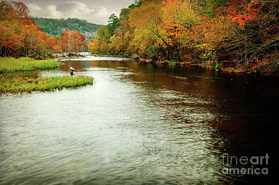 Photograph - Escape To Beaver's Bend by Tamyra Ayles