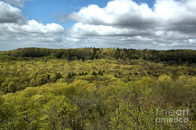 Photograph - Escarpment Spring 1 by Kathi Shotwell