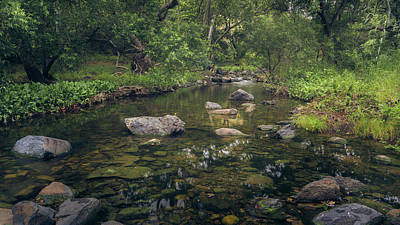 Photograph - Escondido Creek by Alexander Kunz