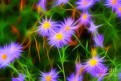 Essence Of Asters Art Print