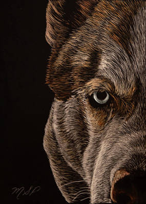Painting - Essence Of Wolf Eye by Margaret Sarah Pardy