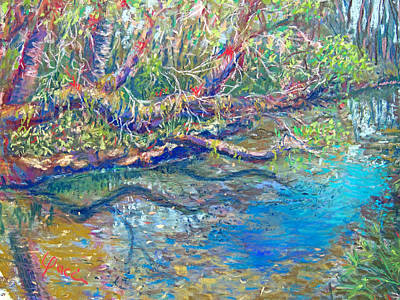 Estero River West Art Print by Laurie Paci