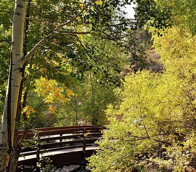 Photograph - Estes Park Colorado by Nava Thompson