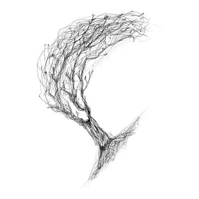 Drawing - Etching 14 - Blowing Tree by Bill Owen