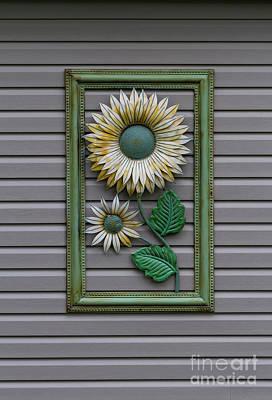 Photograph - Eternal Sunflower by John Herzog