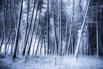 Eternal Winter Art Print