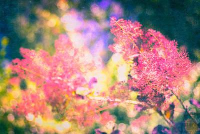 Pink Mixed Media - Ethereal Bloom  by Priya Ghose