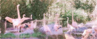 Photograph - Ethereal Flamingo by Andrea Anderegg