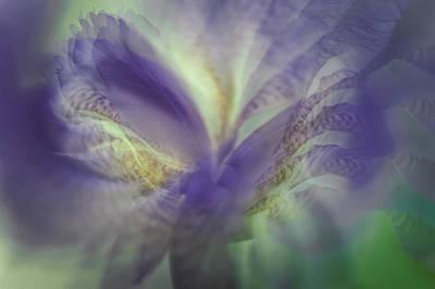 Photograph - Ethereal Life 11. Interior Ideas by Jenny Rainbow