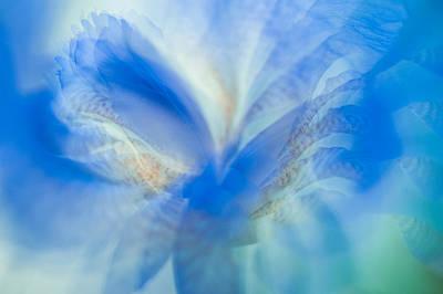 Photograph - Ethereal Life 13. Interior Ideas by Jenny Rainbow
