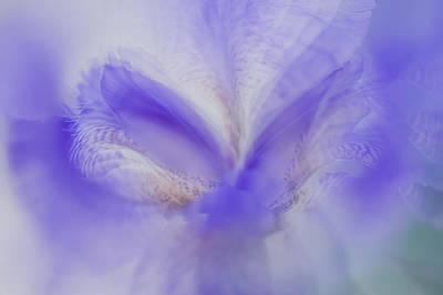 Photograph - Ethereal Life 18. Interior Ideas by Jenny Rainbow