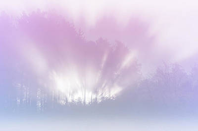 Photograph - Ethereal Light by Jenny Rainbow