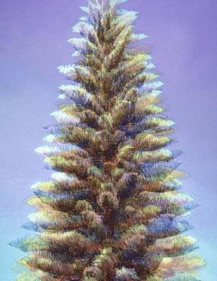 Photograph - Ethereal Norfolk Pine by Jodie Marie Anne Richardson Traugott          aka jm-ART