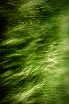 Abstract Movement Photograph - Ethereal by Todd Klassy