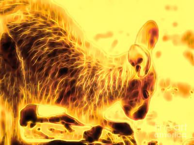 Photograph - Etheric Kangaroo by Tim Richards