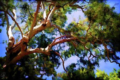 Art Print featuring the digital art Eucalypt by Margaret Hormann Bfa