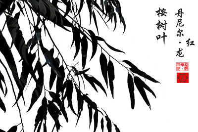 Chinese Photograph - Eucalyptus Leaves  by Daniel Arrhakis