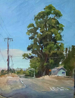 Painting - Eucalyptus Tree Near Schellville, Ca by Peter Salwen