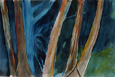 Painting - Eucapyptus Grove, China Camp State Park by Tom Simmons