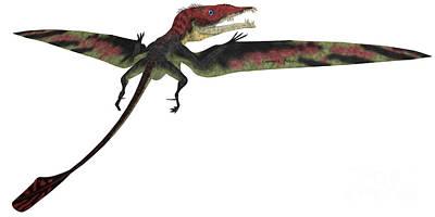 Triassic Painting - Eudimorphodon Profile On White by Corey Ford