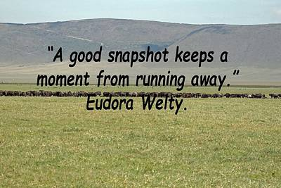 Photograph - Eudora Welty Quote by Tony Murtagh
