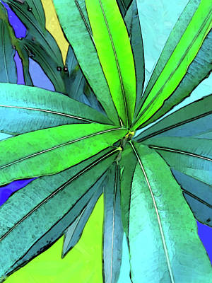 Digital Art - Euphorbia by Gina Harrison
