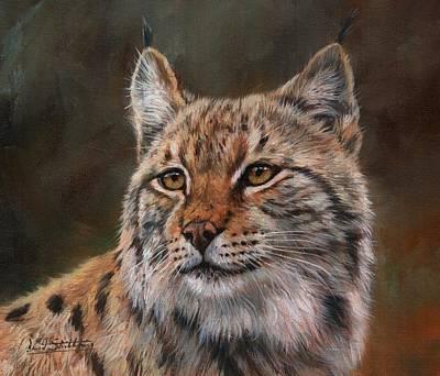 Painting - Eurasian Lynx by David Stribbling