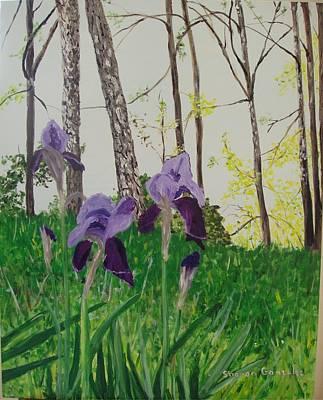 Eureka Springs Irises Art Print by Sharon  De Vore