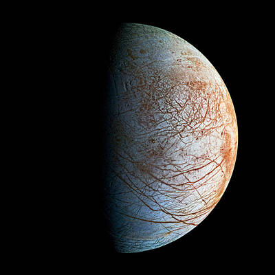 Photograph - Europa by Weston Westmoreland