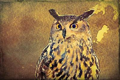 Painting - European Eagle Owl  by Modern Art