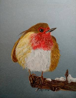 Pastel - European Robin by Joan Mansson