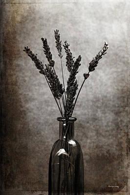 Photograph - Evanescence by Randi Grace Nilsberg