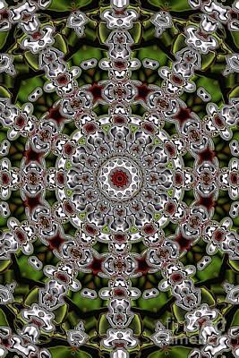 Digital Art - Evans Branch Star Kaleidoscope by Donna L Munro